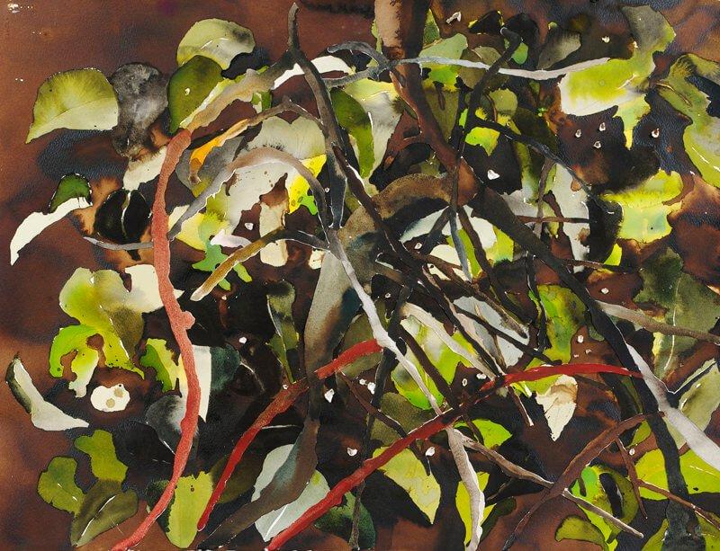Apple tree, 2004