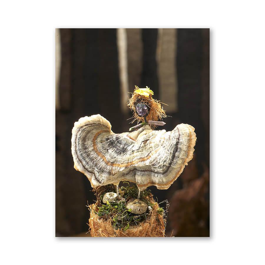 Bidelia, dancing fungi girl, 2007