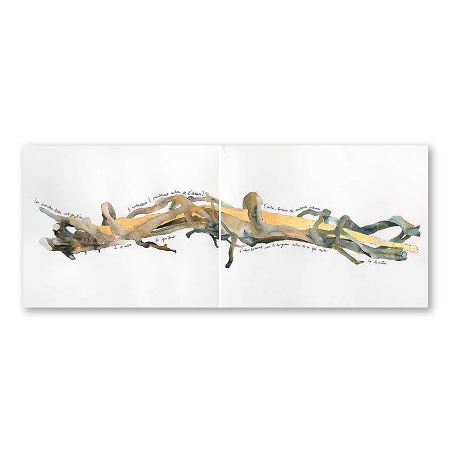 Les entrelacs de Burwash Wood, ii, 2002