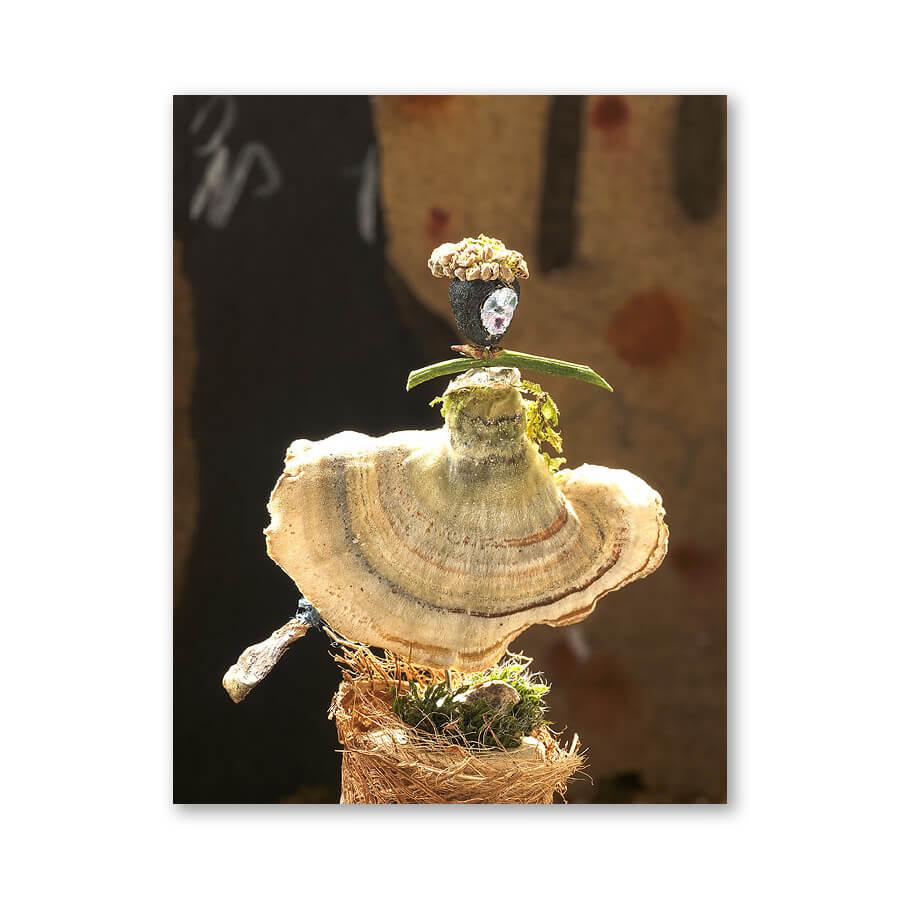 Eillionoir, dancing fungi girl, 2007