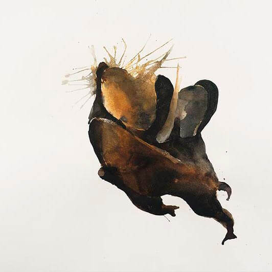 Headstand, Acrobatic caterpillars, 2003