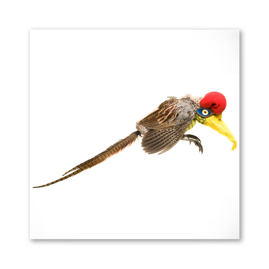 Pheasant,  bird dolls, 2007