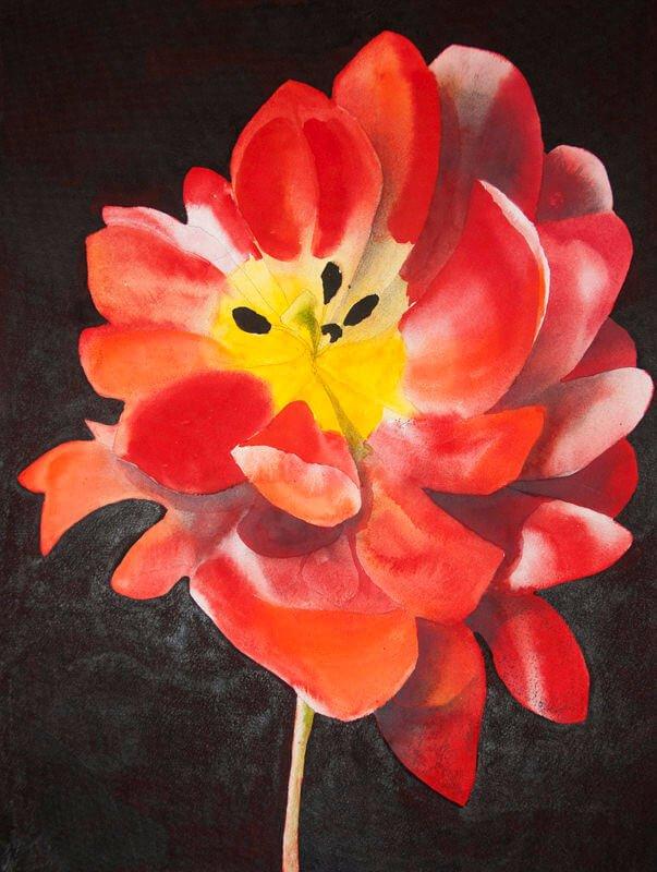 Tulip, i, 2019